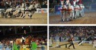 2014 Olympia International Horse Show