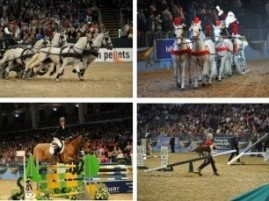 2013 Olympia International Horse Show