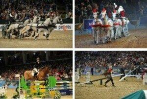 2014 London olympia international horse show