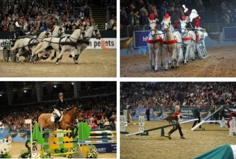 2014 London olympia international horse show