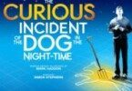 curious incident theatre breaks