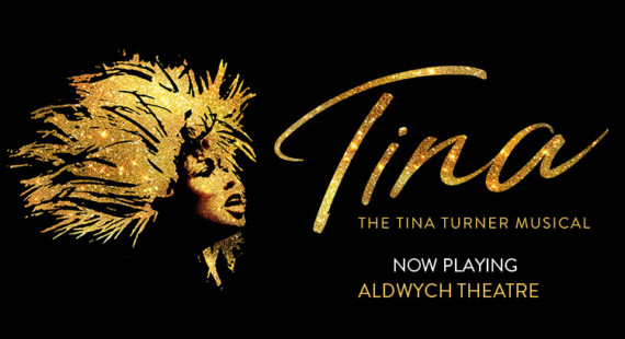Tina Turner musical theatre breaks poster